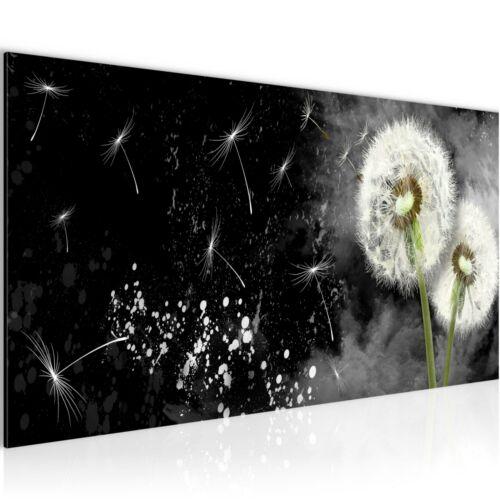 WANDBILDER XXL BILDER Blumen Pusteblume VLIES LEINWAND BILD KUNSTDRUCK 015812P