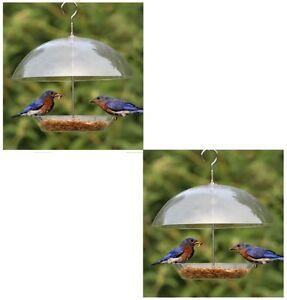 Paquet-De-Deux-Transparent-Recouvert-Dome-Oiseau-Graines-Mangeoire-Pour-Petit