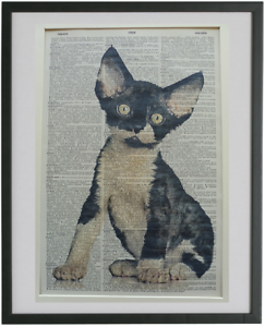 book lover gifts Devon Rex Cat Print No.719 housewarming devon rex cat gifts