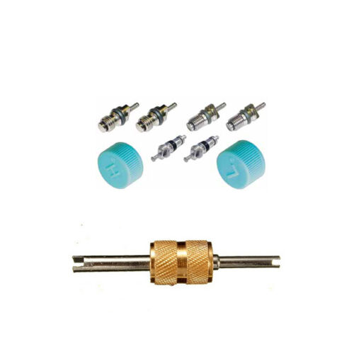 Santech Industries Automobile A//C System Caps /& Valves Kit With Removal tool