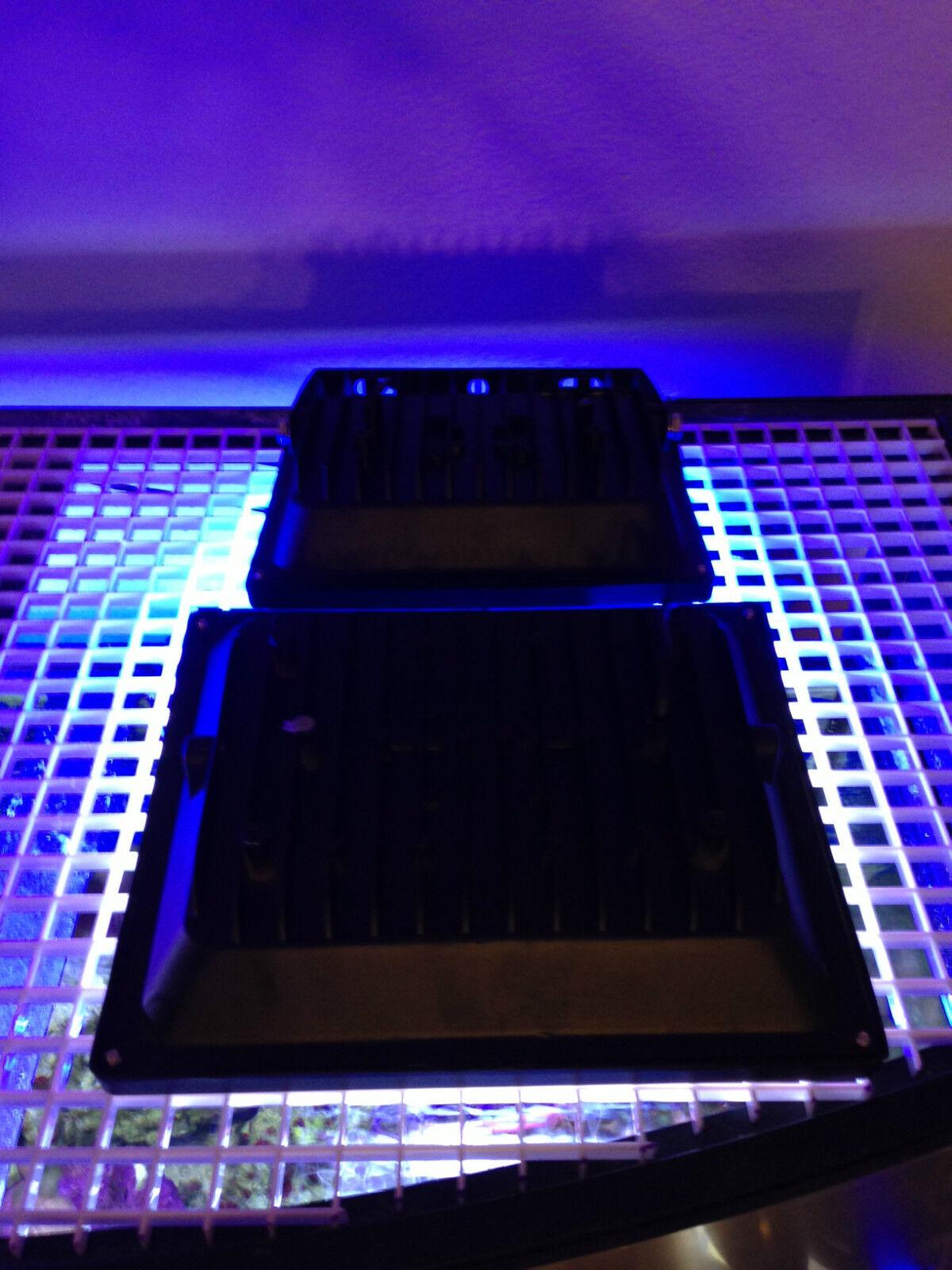 Aquarium Reef 2X LED Light Combo 12K Actinic Blau 5 10 15 Gal Bio-Cube JBJ Nano