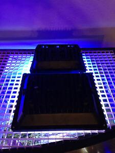 Aquarium-Reef-4X-LED-Light-Combo-2x-50W-12K-amp-2x-30W-Actinic-Blue-160W-4ft-48-034