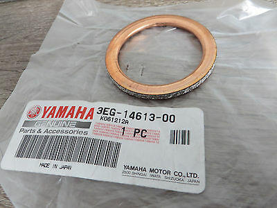 Auspuff Krümmerdichtung 43X55X4 für Yamaha XV 750 Virago Gussrad