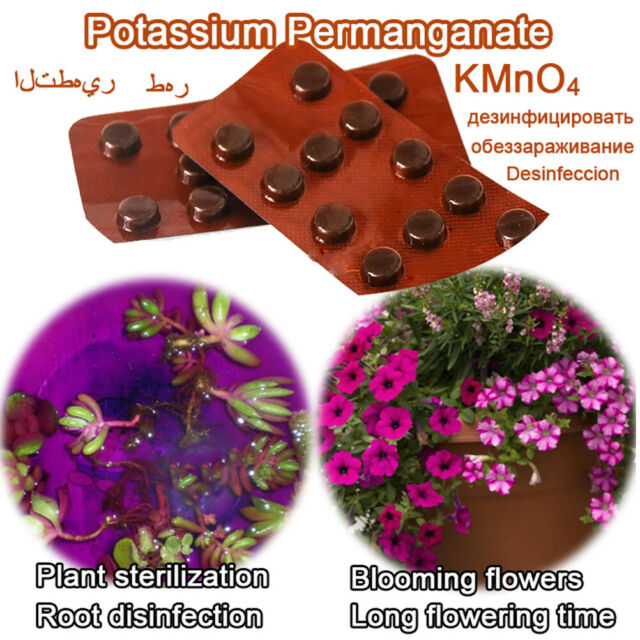 24x Potassium Permanganate Tablet Bonsai Plant Rooting Aquarium SterilizatiBL.