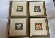 Four Framed Shireley Ann Johnson Watercolours of flowers