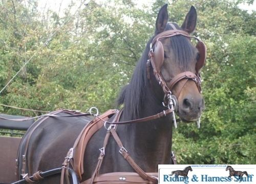 Zilco Brun Carriage Driving Harness Set Brown