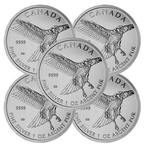 Lot-of-5-2015-Canadian-1oz-Silver-Red-Tailed-Hawk-5-Coin-9999-Fine-BU
