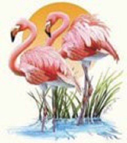 Flamingo Pair in Sunset     Tshirt Sizes//Colors
