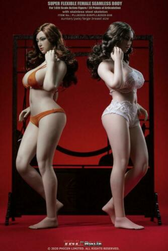 【NEW】 TBLeague PHICEN 1//6 Steel Skeleton Seamless PLUMP Lady Figure Body