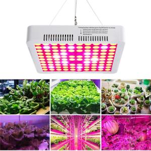 300W LED Grow Light Full Spectrum Hydro Veg Flower Plant ...