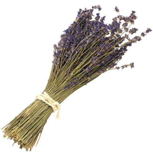 1 Bunch Lavender Natural Dried Flower Best Gift Plant Grass Decor