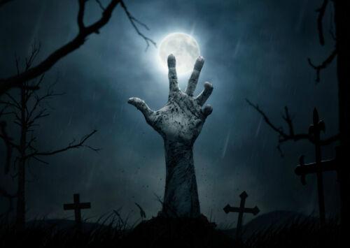 Zombie Graveyard Scary Halloween Art Giant Framed CANVAS PRINT A0 A1 A2 A3 A4