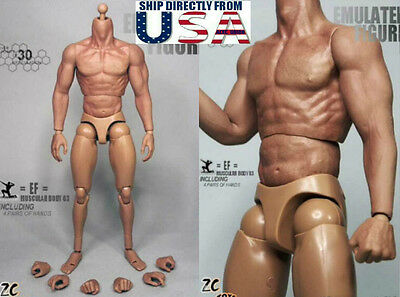 "ZC Toys 1//6 Muscular Figure Body 3.0 Fit For 12/"" Hot Toys with Seamless Arms Hot"