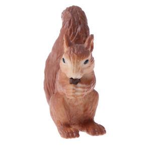 Realistic Plastic Zoo Animal Model Figure Kids Preschool Toy Gift - Squirrel