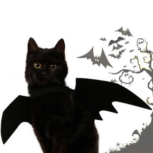 Lovely-for-small-pet-dog-cat-bat-wings-halloween-wings-halloween-costume-B-Dz