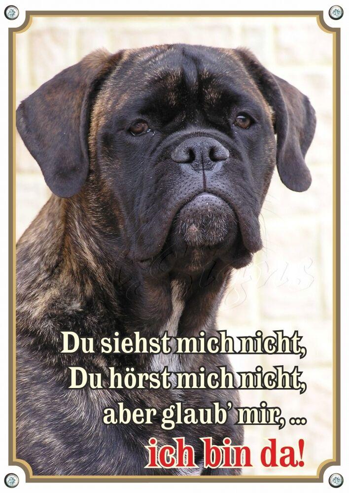 Cani segnaletica-BULLMASTIFF-stabile targhetta in metallo - 1,5 mm di spessore-Wett patrimonio