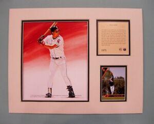 California Angels Tim Salmon 1993 Baseball 11x14 MATTED Kelly Russell Print