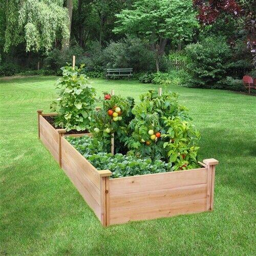 2 X 8 Ft Cedar Raised Garden Bed Wood Planter Box Vegetable Herb