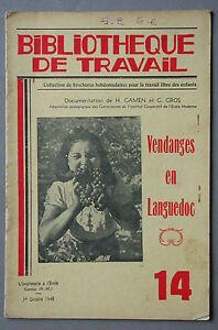 BT-14-Vendanges-en-Languedoc-Comportes-Petrins-Vin-Mesures-Mustimetriques-Cave