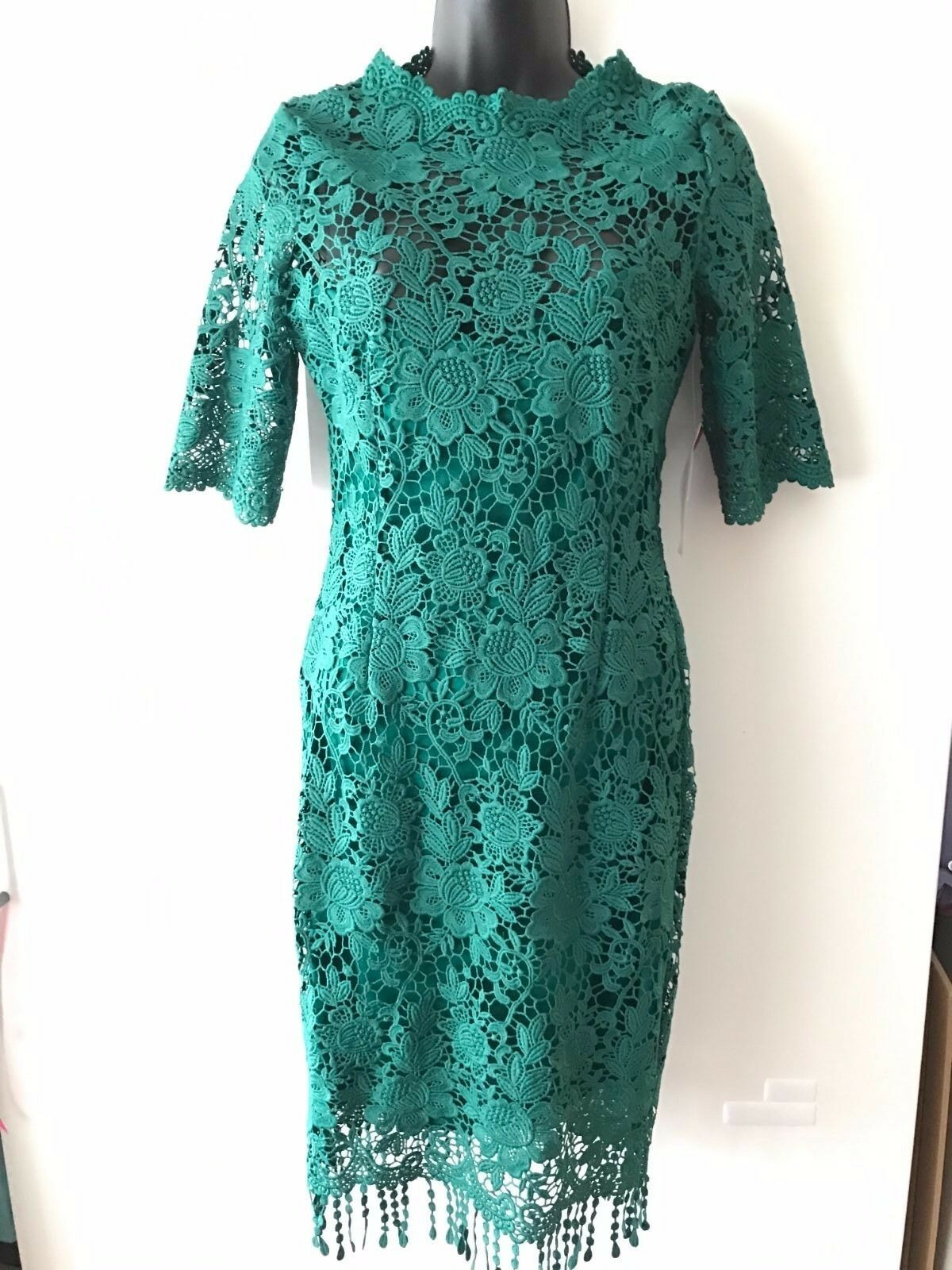 Paper Dolls London Party evening prom petite lace dress size 8UK- new with tag