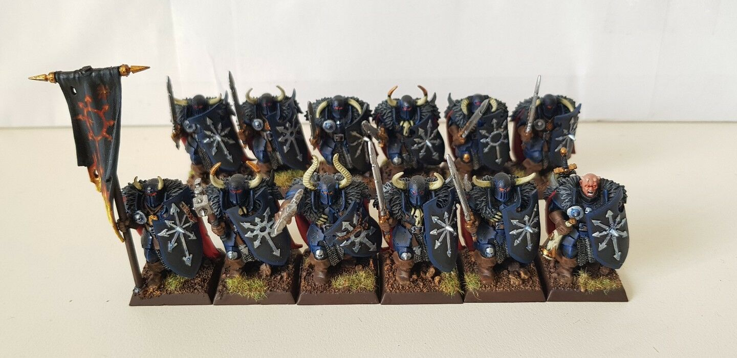 12 x Warriors of Chaos well painted plastic models with command (b)
