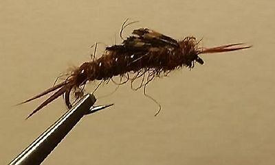 Trout Wet Fly BH Golden Kauffman Stonefly Nymph 1 dozen