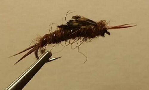 Brown Kauffman Stonefly Nymph 1 dozen Trout Wet Fly