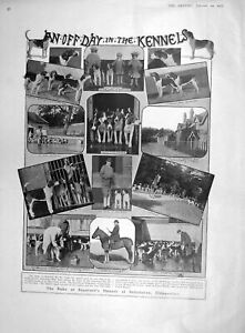 Original Old Antique Print 1907 Duke Beaufort Dogs Badminton Professor Herkomer