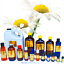 3ml-Essential-Oils-Many-Different-Oils-To-Choose-From-Buy-3-Get-1-Free thumbnail 24