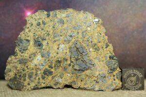 TAOUDENNI Achondrite Diogenite météorite 46.3 G fin coupe redécouvert du Mali