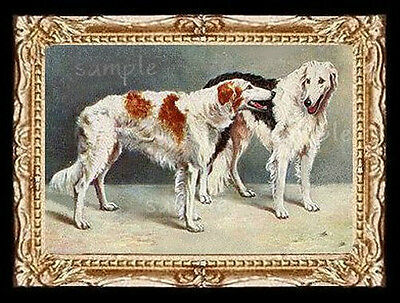 Borzoi Hounds  Miniature Dollhouse Doll House Picture