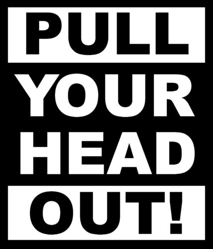 Pull your head out decal//sticker car auto truck rv mancave USA 3x3.5