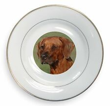 Rhodesian Ridgeback Dog Gold Rim Plate in Gift Box Christmas Present, AD-RR1PL