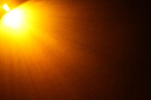verkabelt sehr helle LEDs 5mm Flachkopf wasserklar Schrauben 80cm Kabel LED