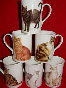 BN-Fine-Bone-China-Boxed-Cat-Mug-Cat-Gift-Cat-Cup-Pet-Gift-Cat-Gift-Mug