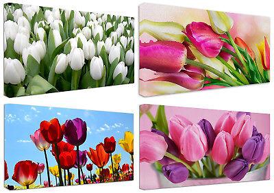 Quadri Moderni Fiori Tulipani cm.100x50 Arredo Casa Stampa su Tela ...