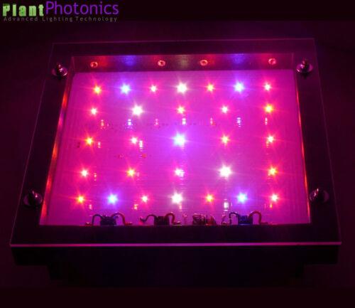 130W Led Grow Light Dual Spectrum Amethyst Energy 50 Indoor Gardening