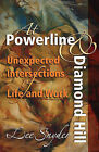 At Powerline and Diamond Hill: Unexpected Intersections of Life and Work by Lee Snyder (Paperback, 2010)