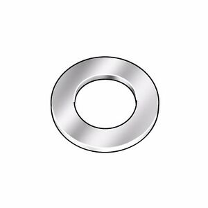 Z9161 Flat Washer, Thick, 18-8, Fits 1/4 in, PK10 (LS1925/5RU86*A)