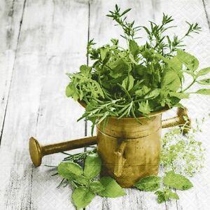4-Servietten-034-Variety-of-herbs-034-33x33-Napkins-Herbst-Kraeuter-Pflanzen-Rosmarin