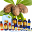 3ml-Essential-Oils-Many-Different-Oils-To-Choose-From-Buy-3-Get-1-Free thumbnail 89