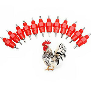 5Pcs-Chicken-Drinker-Feeder-Screw-In-Backyard-Poultry-Duck-Hen-360-Nipple-Water