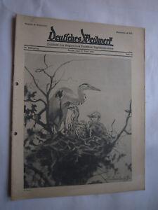 """Antiquitäten & Kunst Jagdzeitung""""deutsches Weidwerk""""36.jahrgang,heft 12 Von 1931,jagd,jagdhund,pirsch Jäger & Waidmann"""