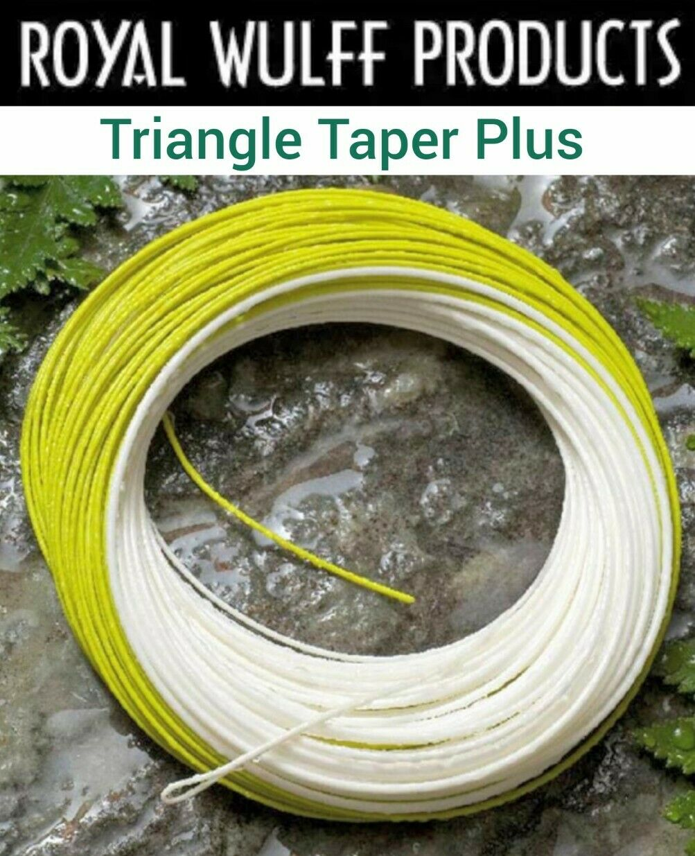 Royal Wulff TRIANGLE Taper PLUS Fly LINE WT 2-9 Floating J3 Coating Fly Fishing