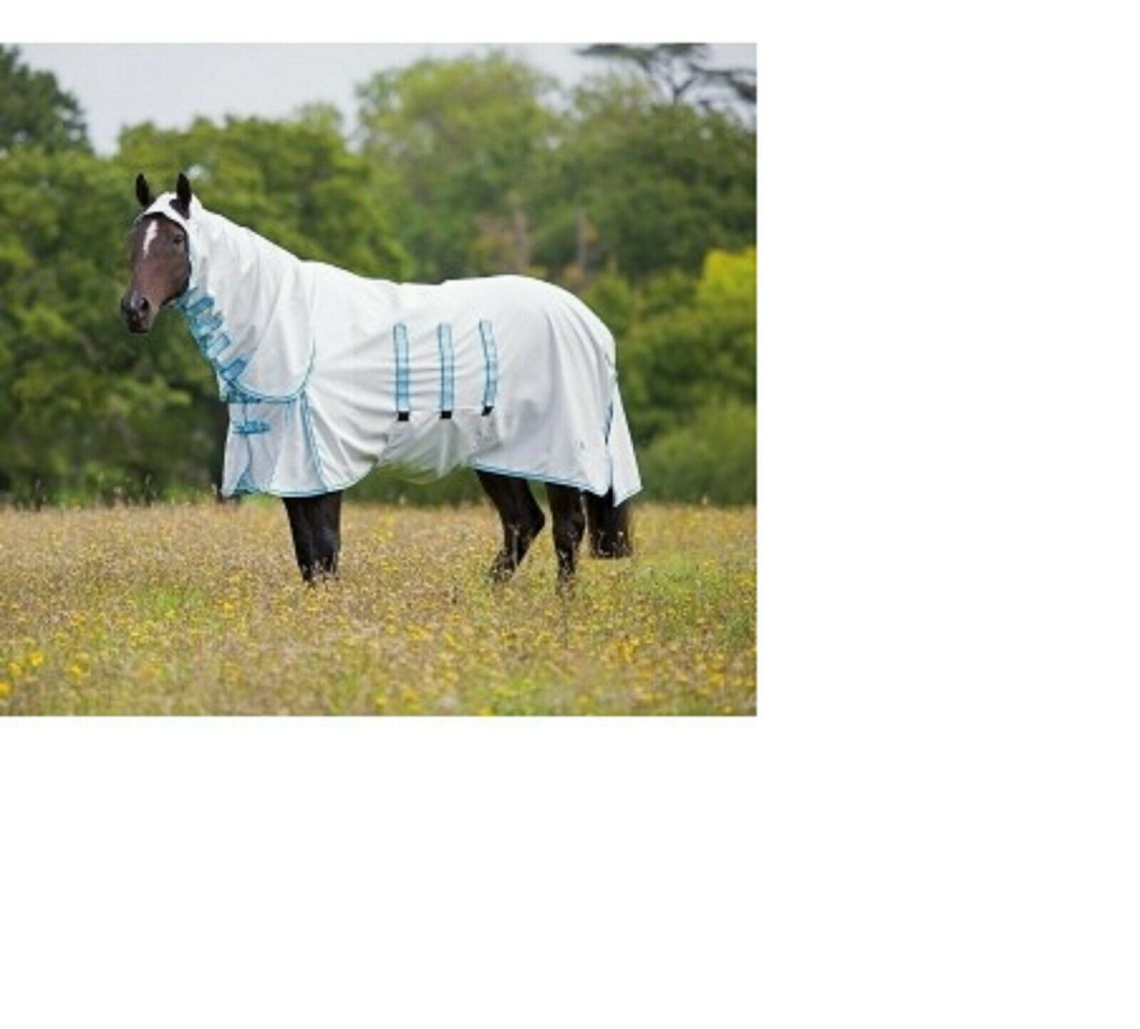 Bridleway  Sweet Itch Rug  Combo Fly Rug Bug Horse Pony 7,0 clearance sale