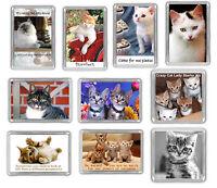 Cat Fridge Magnets - Kitten Funny Novelty Choose