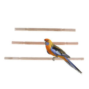 Natural-Wood-Pet-Parrot-Stand-Toy-Bird-Bar-Branch-Perches-for-Bird-Cage
