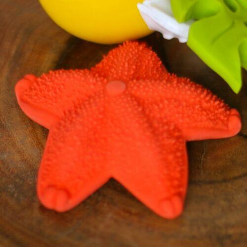 Mushroom, Seastar, Cactus Set Gea by Lanco Natural rubber toys 3