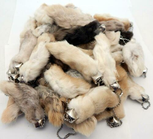 Oryctolagus Cuniculus 25 Natural Color Lucky RABBITS FOOT Keychains New