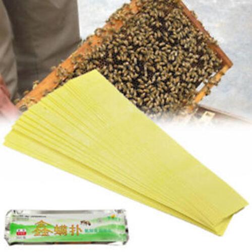 20 PCS Flumethrin Tötung gegen Milben Streifen Bienenzucht Schädlingsbekämpfung